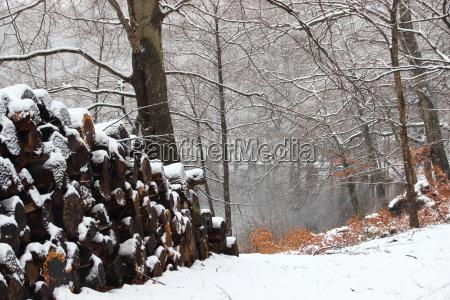 sentimentos emocoes inverno tranqueilidade neve