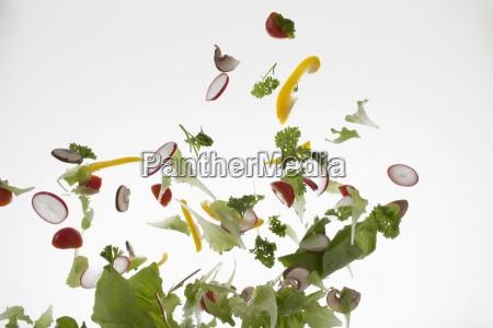 movimento em movimento alimento folha cor