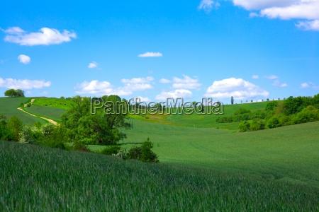 campo verde no ceu azul