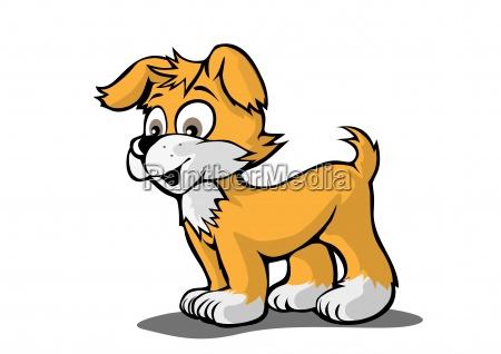 laranja comico animal animal de estimacao