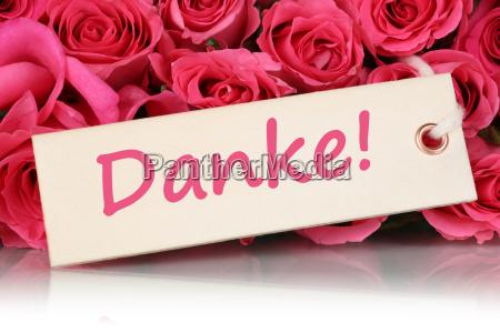 gracas com flores rosas para o
