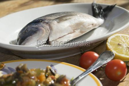 anchovas e lulas do mediterraneo