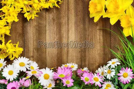 spring flowers frame wood