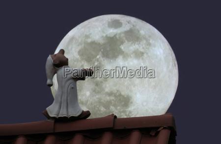 lunar caminhante do sono no telhado