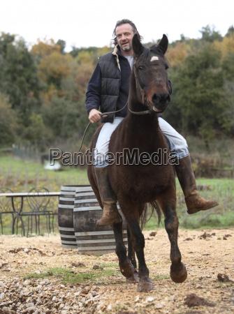 homens homem cavalo animal europa toscana