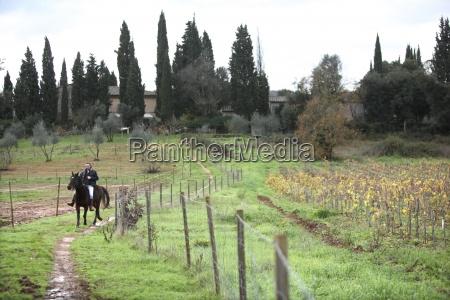 homens homem cavalo animal europa horizontalmente