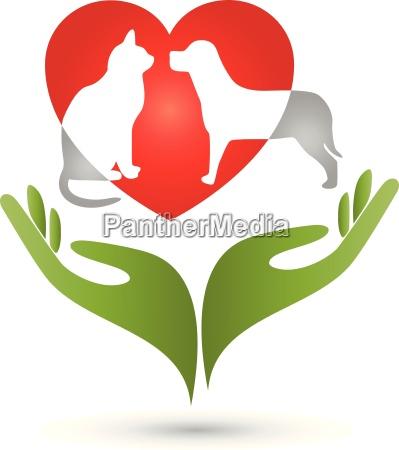 gato cachorro logotipo maos coracao