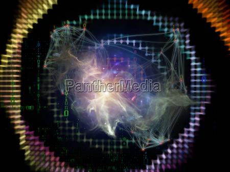 a vida interna da rede