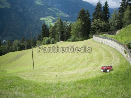 corte de gramado no prado