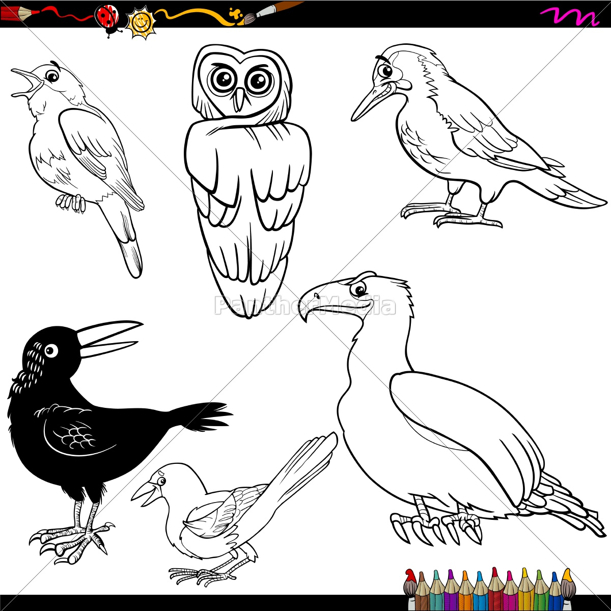 Aves Cartoon Pagina Para Colorir Stockphoto 14352501 Banco