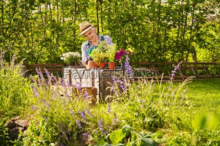 jardim jardineiro chapeu de palha plantas