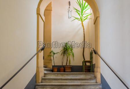 escada branco plantas