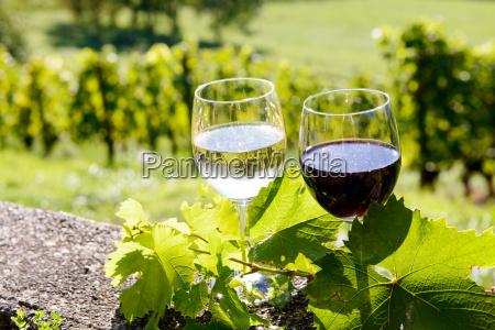 vidros do vinho vermelho e branco