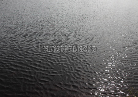 contraste negro verao ondas reflexao suave