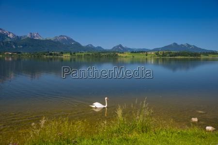 germany bavaria allgaeu east allgaeu lake