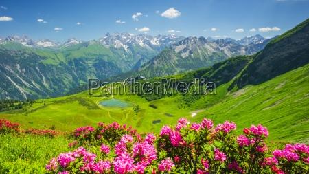 germany bavaria allgaeu alps fellhorn view