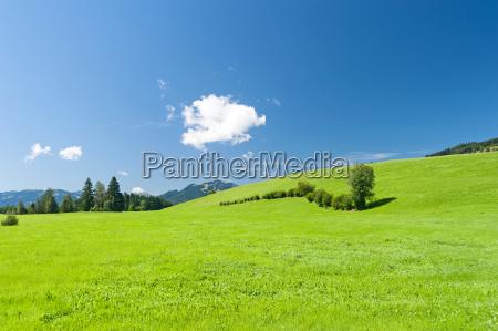 nuvem bavaria allgaeu alemanha prado paisagem