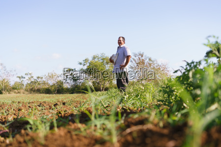 portrait man farmer standing in tomato