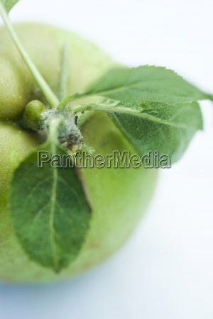 green apple and leaves close up