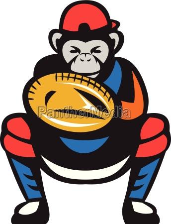 luva bone chimpanze capo jogador beisebol