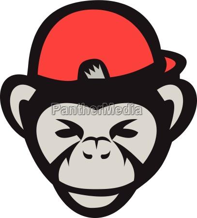 chapeu bone chimpanze capo jogador beisebol