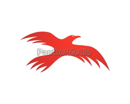 modelo do logotipo do falcao