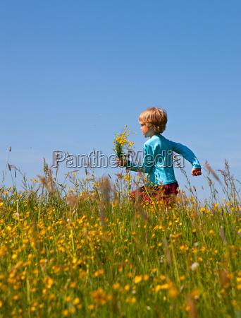 boy walking in field of flowers