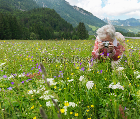 woman photographing field of flowers
