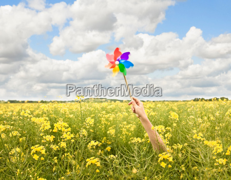arm holding windmill in yellow flowers