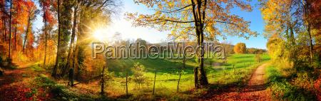 paisagem magica no outono panorama ensolarado