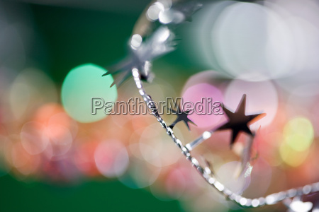 close up inverno festivo yule mare