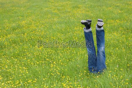 mannequin legs in a field