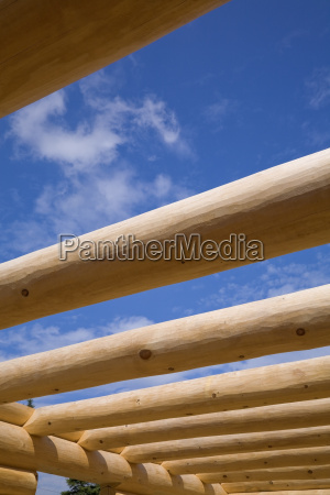 industria madeira futuro pinho canada ao