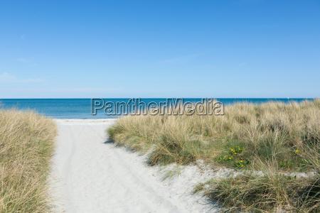 maneira atraves da areia a praia