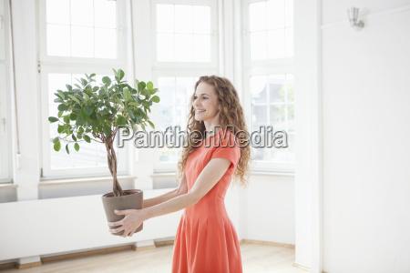 planta de sorriso da terra arrendada