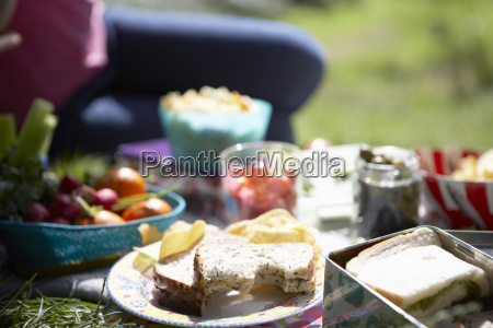 picnic, food, laid, out, on, blanket - 19409058