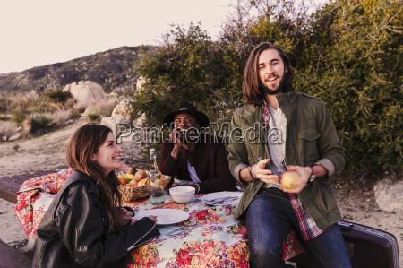 three adult friends having picnic in