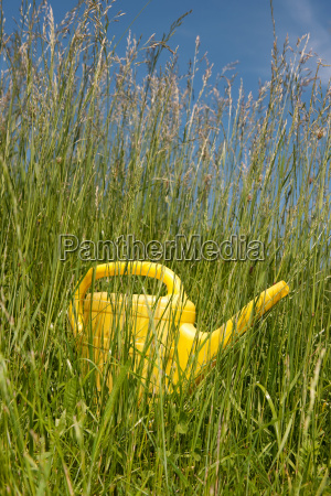 yellow watering can in long grass
