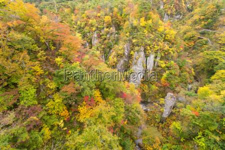 naruko gorge autumn sai na temporada