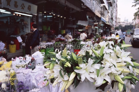 white lilies flower market mong kok