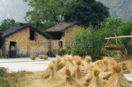 village scene lanshi guangxi province china