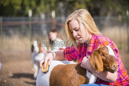 eua, texas, raparigas, que, preparam, a, cabra, da - 21041739