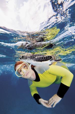 bahamas mergulhador que olha a tartaruga