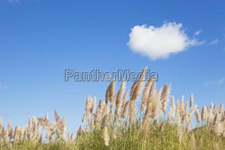 passeio viajar nuvem ao ar livre