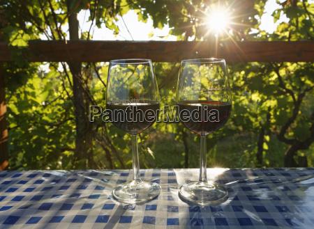 vidro copo de vidro passeio viajar