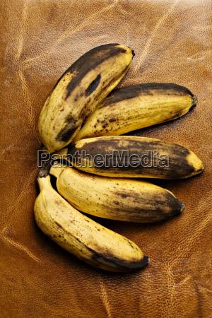 marrom maduro couro fruta banana bronzeado