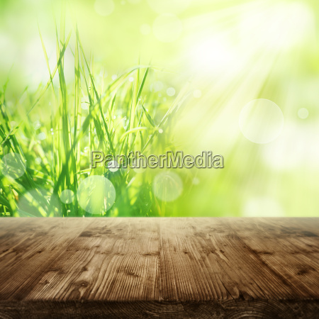 spring background with grass and wooden