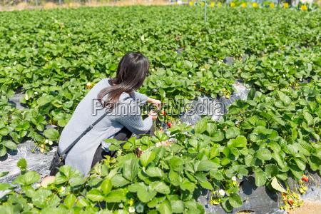 mulher azul pessoas povo homem alimento