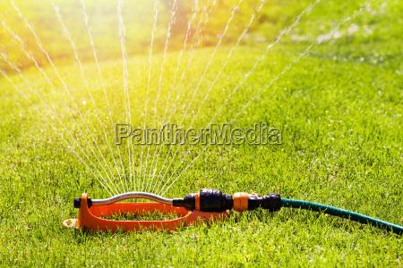aspersor de gramado spaying agua sobre
