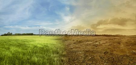 paisagem do campo do prado com